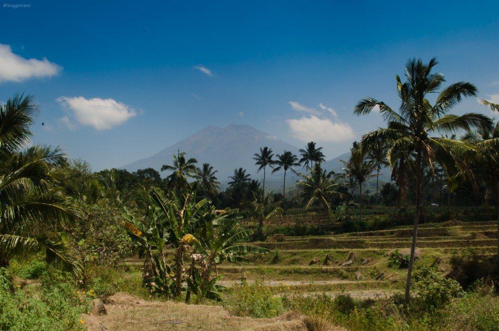 wisata-desa-sapit-lombok